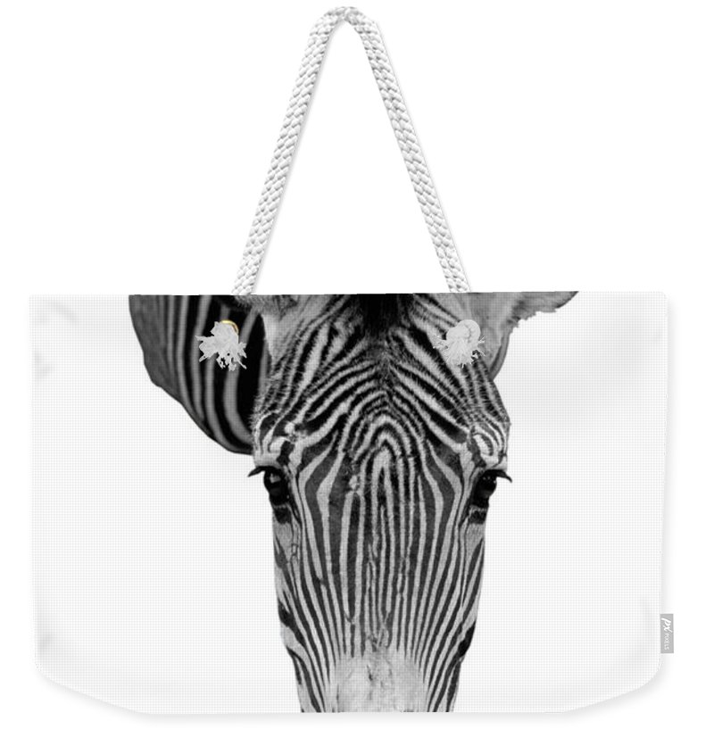 Zebra Weekender Tote Bag featuring the photograph Here's Looking At You by Jerry McElroy