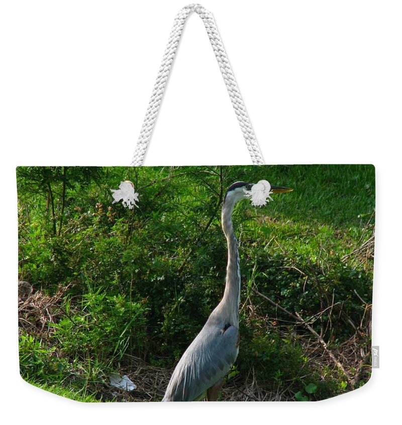 Patzer Weekender Tote Bag featuring the photograph Heron Blue by Greg Patzer