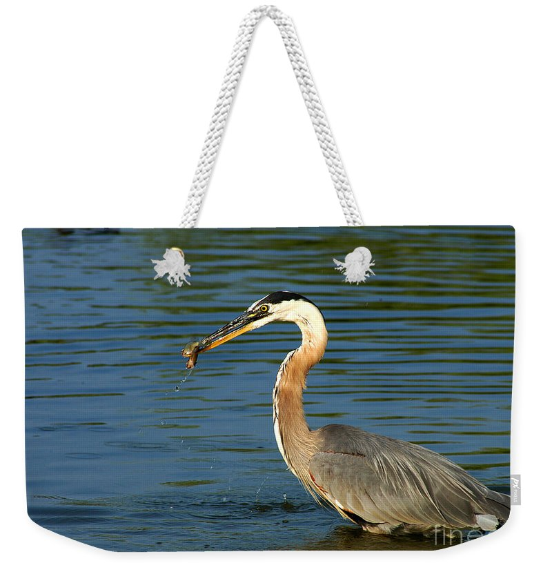 Clay Weekender Tote Bag featuring the photograph Herons Catch by Clayton Bruster