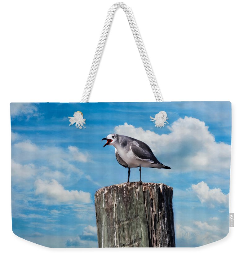 Seagull Weekender Tote Bag featuring the photograph Hey There by Kim Hojnacki