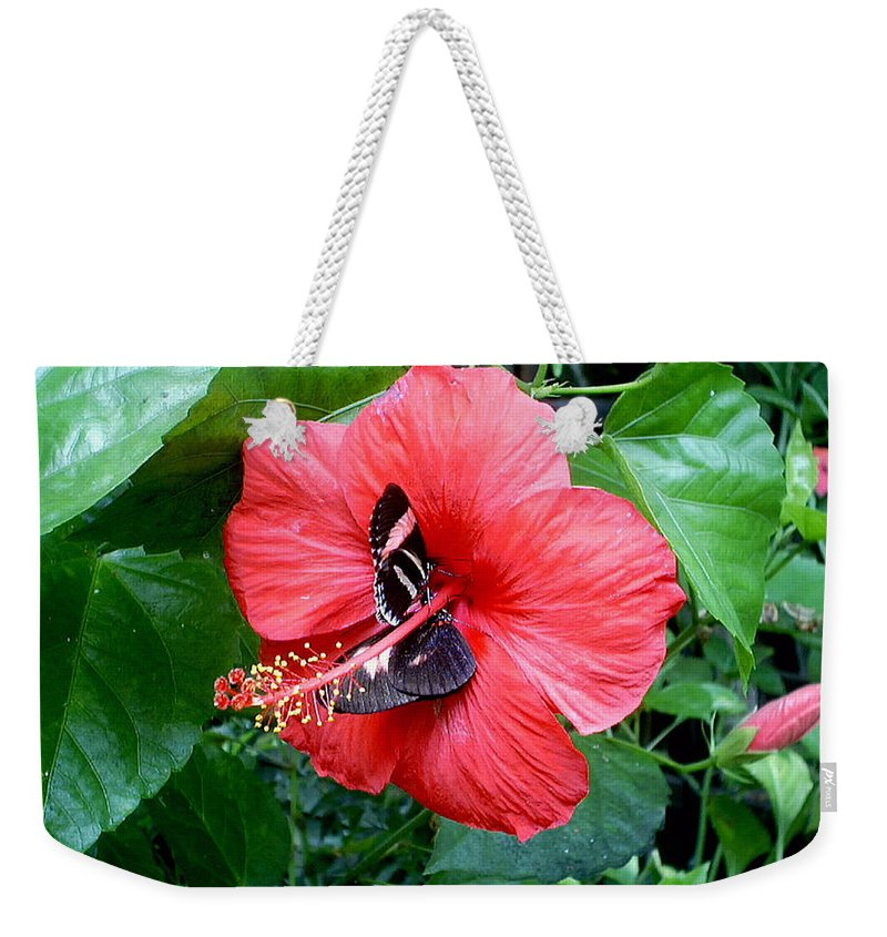 Flora Weekender Tote Bag featuring the photograph Hibiscus And Butterfly Diners by Susan Baker