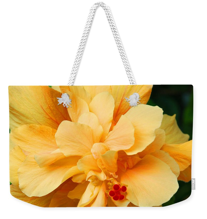 Hibiscus Weekender Tote Bag featuring the photograph Hibiscus by Susanne Van Hulst