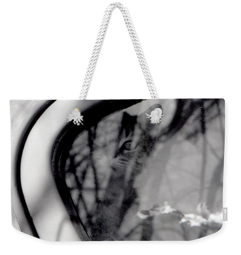 Abstract Weekender Tote Bag featuring the photograph Hidden Cat by Lyle Crump
