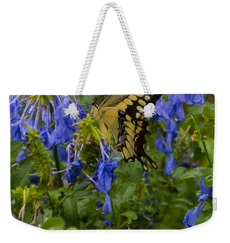 Butterfly Weekender Tote Bag featuring the photograph Hidden In Plain Sight by Dennis Reagan