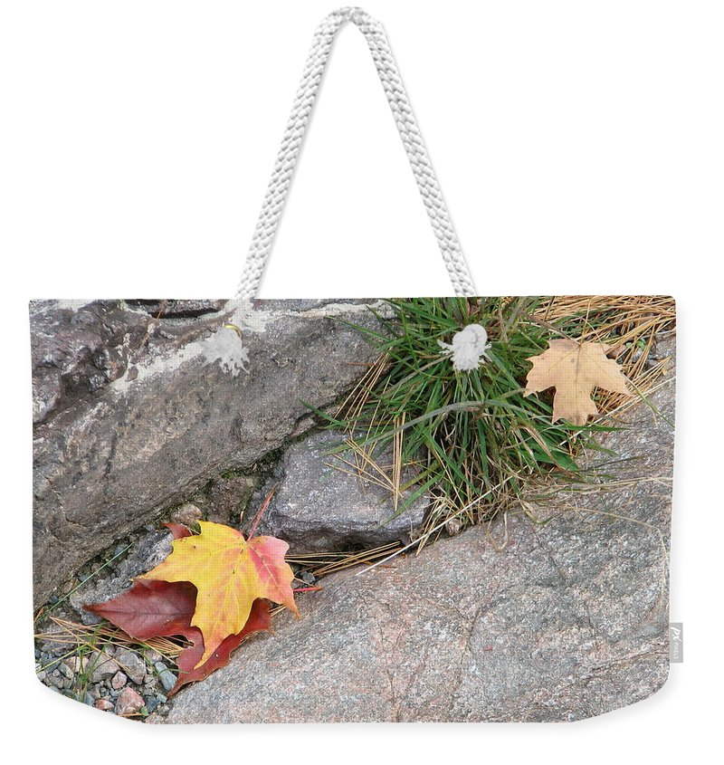 Fall Weekender Tote Bag featuring the photograph Hiding by Kelly Mezzapelle