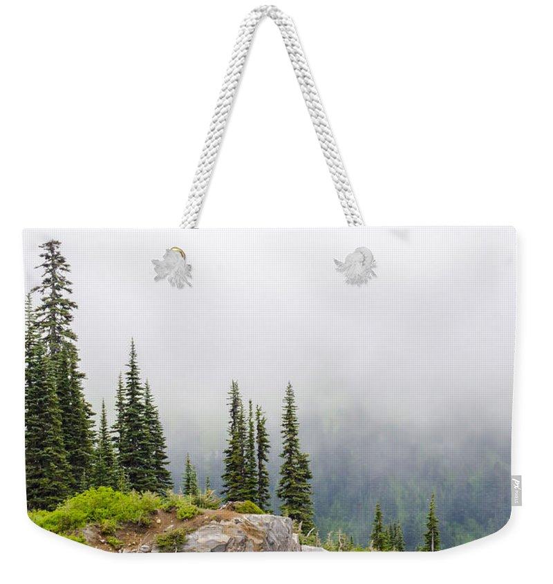 Mount Rainier National Park Weekender Tote Bag featuring the photograph High Forest On Mt. Rainier by Lynn Hansen