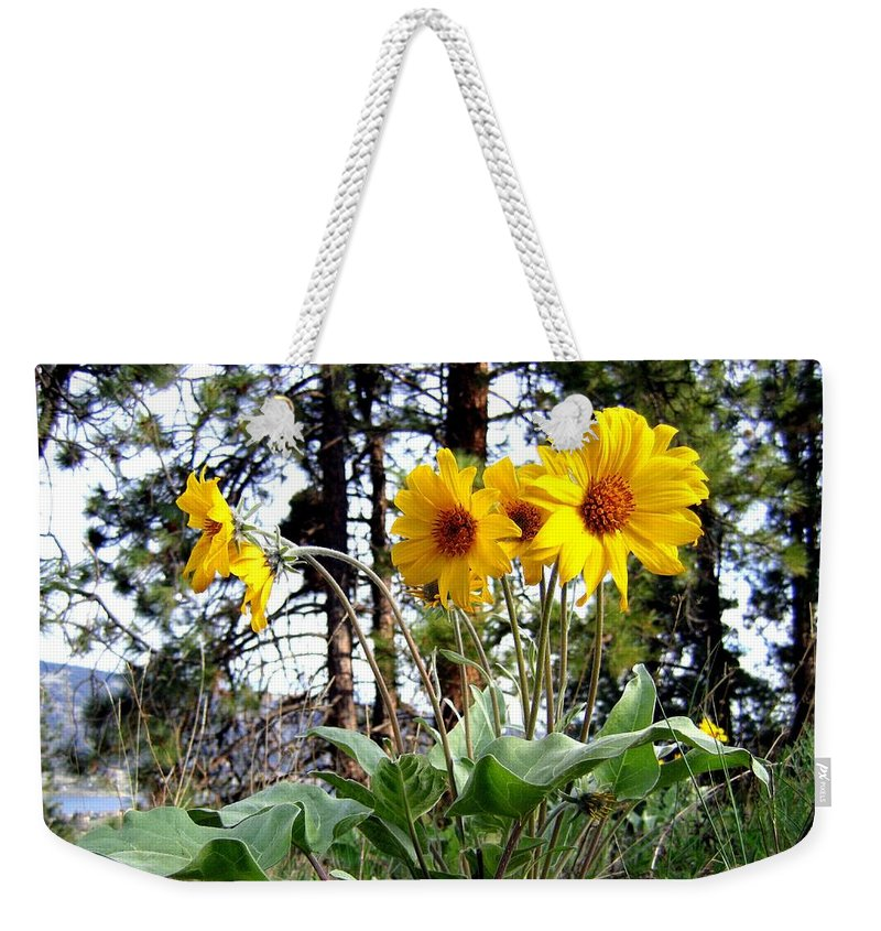 Sunflowers Weekender Tote Bag featuring the photograph High In The Hills by Will Borden