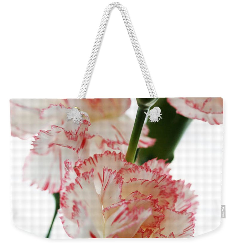 High Weekender Tote Bag featuring the photograph High Key Pink And White Carnation Floral by Kathy Clark