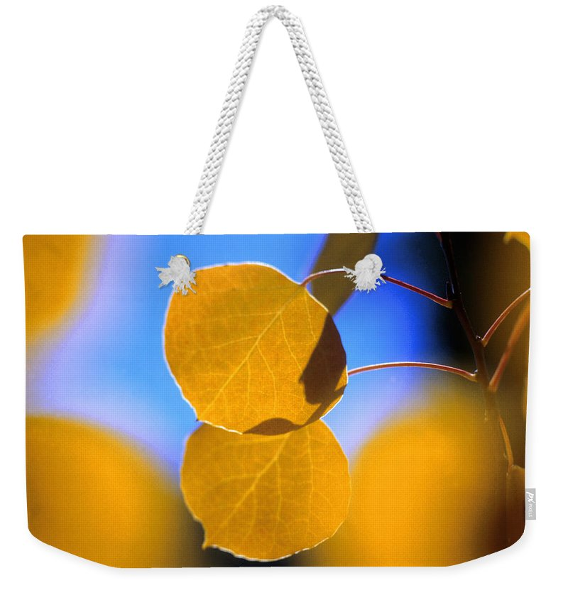 Aspen Weekender Tote Bag featuring the photograph High Mountain Glory by Jerry McElroy