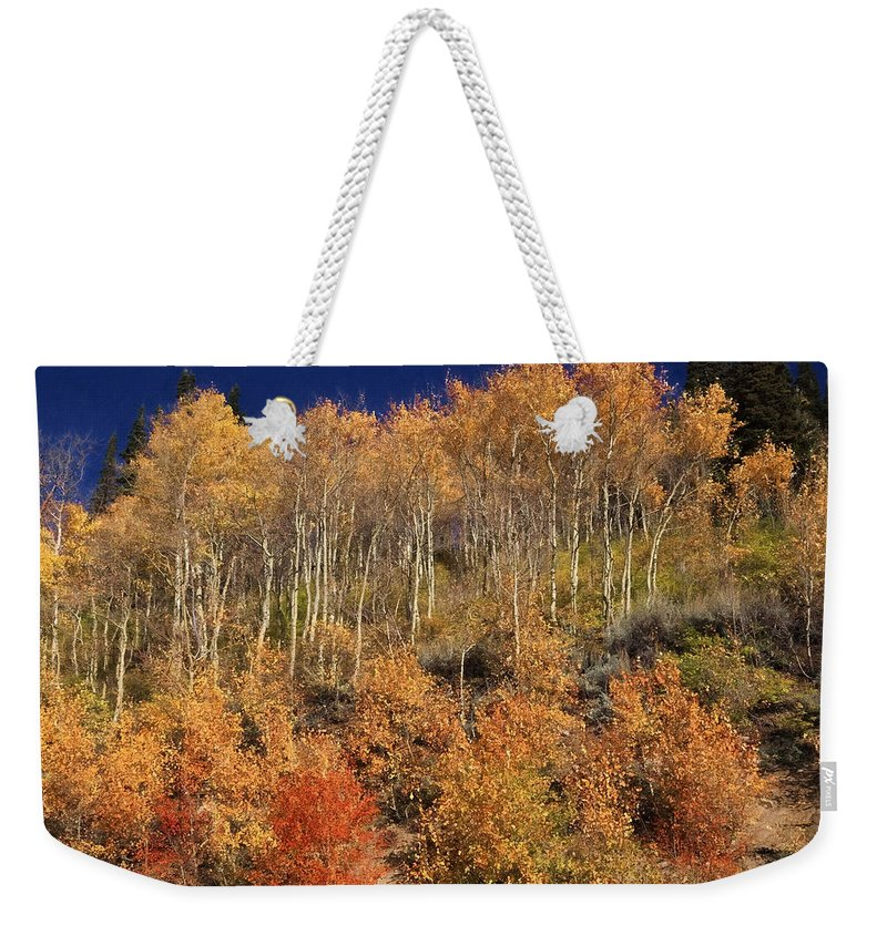 Wasatch Mountains Weekender Tote Bag featuring the photograph High On The Hill by Donna Kennedy