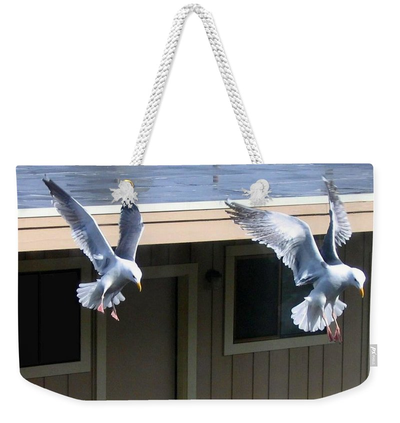 Seagulls Weekender Tote Bag featuring the photograph High Spirits by Will Borden