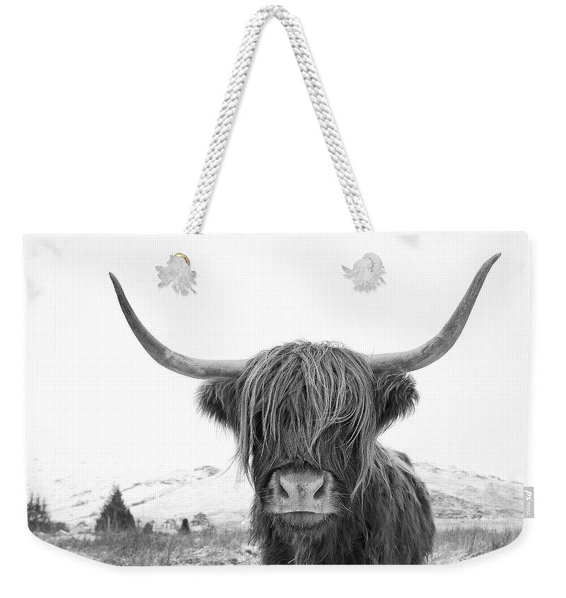 Bull Weekender Tote Bags