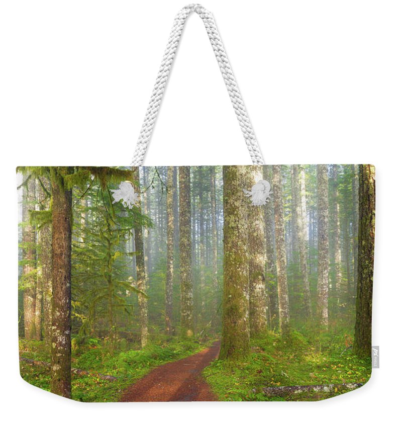 Hiking Weekender Tote Bag featuring the photograph Hiking Trail In Washington State Park by David Gn