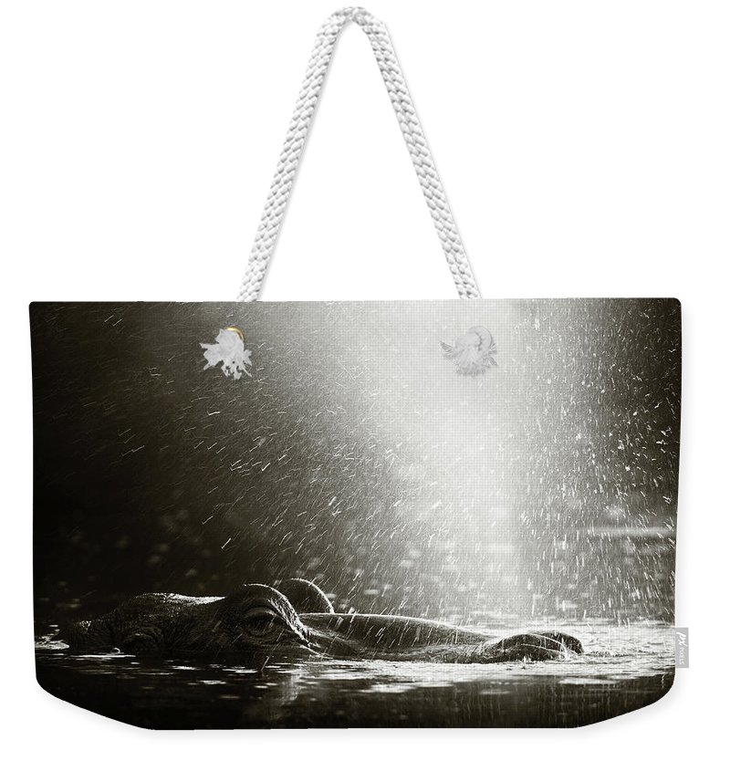 Africa Weekender Tote Bag featuring the photograph Hippo Blowing Air by Johan Swanepoel