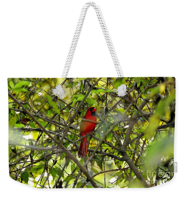 Red Weekender Tote Bag featuring the photograph His Majesty by David Lee Thompson