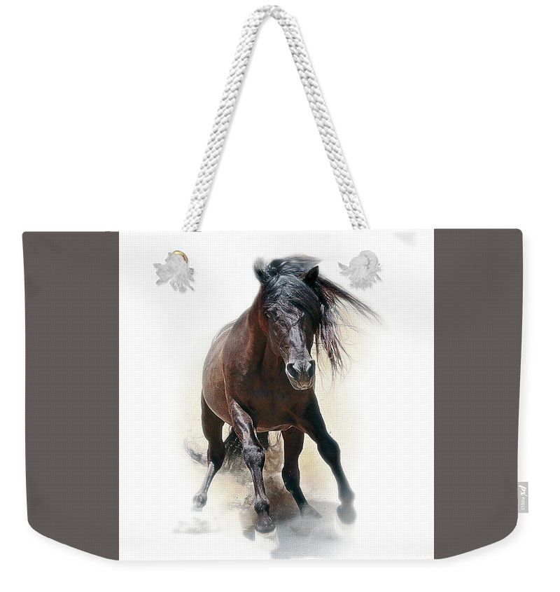 Brake Weekender Tote Bag featuring the photograph Hitting The Brakes by Don Schimmel