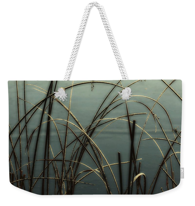 Hoar Frost Weekender Tote Bag featuring the photograph Hoar Frost On Pond 1 by Marilyn Hunt