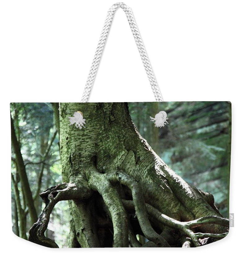 Trees Weekender Tote Bag featuring the photograph Hold On To Me. by Amanda Barcon