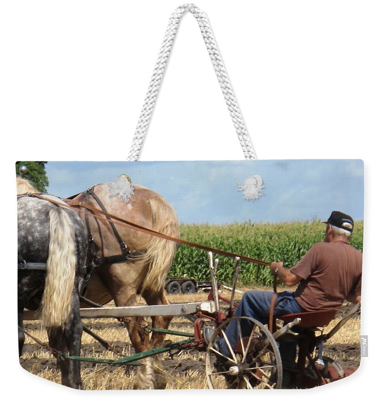 Horses Weekender Tote Bag featuring the photograph Hold Your Horses by Ian MacDonald