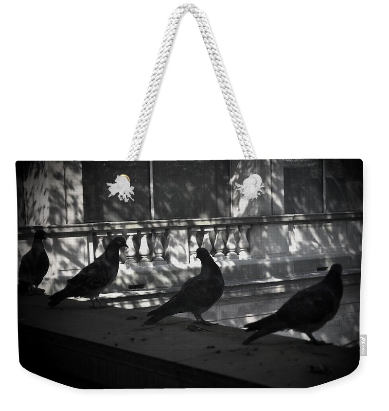 Birds Weekender Tote Bag featuring the photograph Holding Court by Tim Nyberg