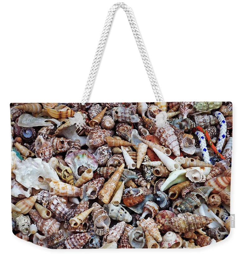 Shells Weekender Tote Bag featuring the photograph Holiday Harvest by Charles Stuart
