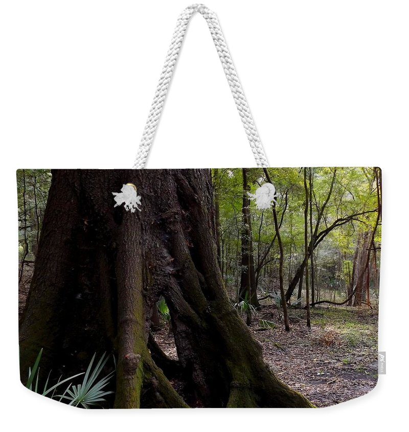 Tree Weekender Tote Bag featuring the photograph Hollow by Julie Pappas