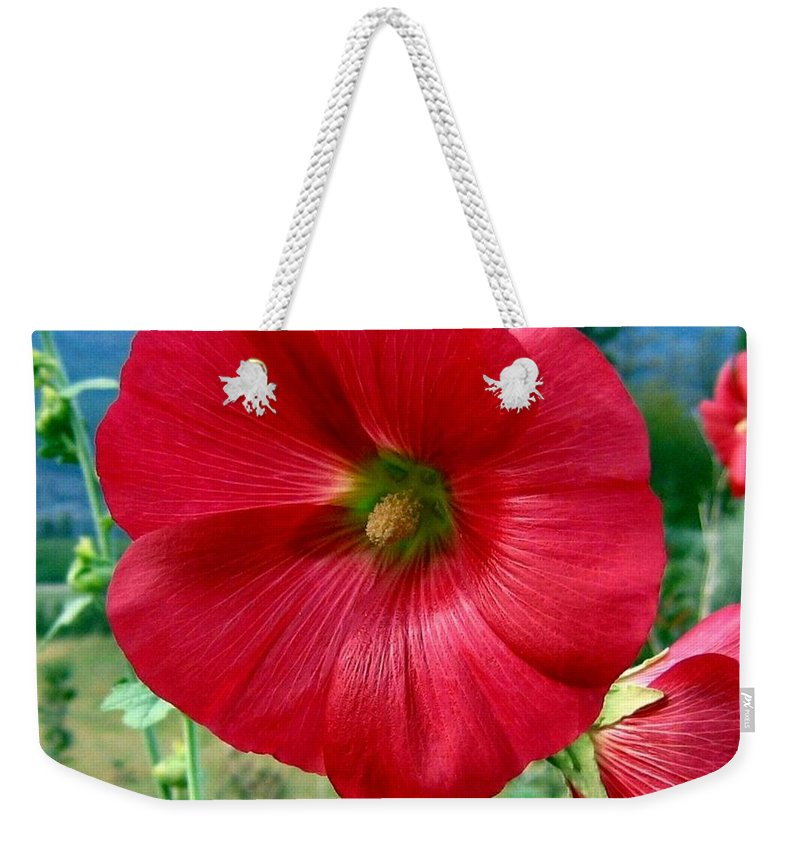 Hollyhocks Weekender Tote Bag featuring the photograph Hollyhock Hill by Will Borden
