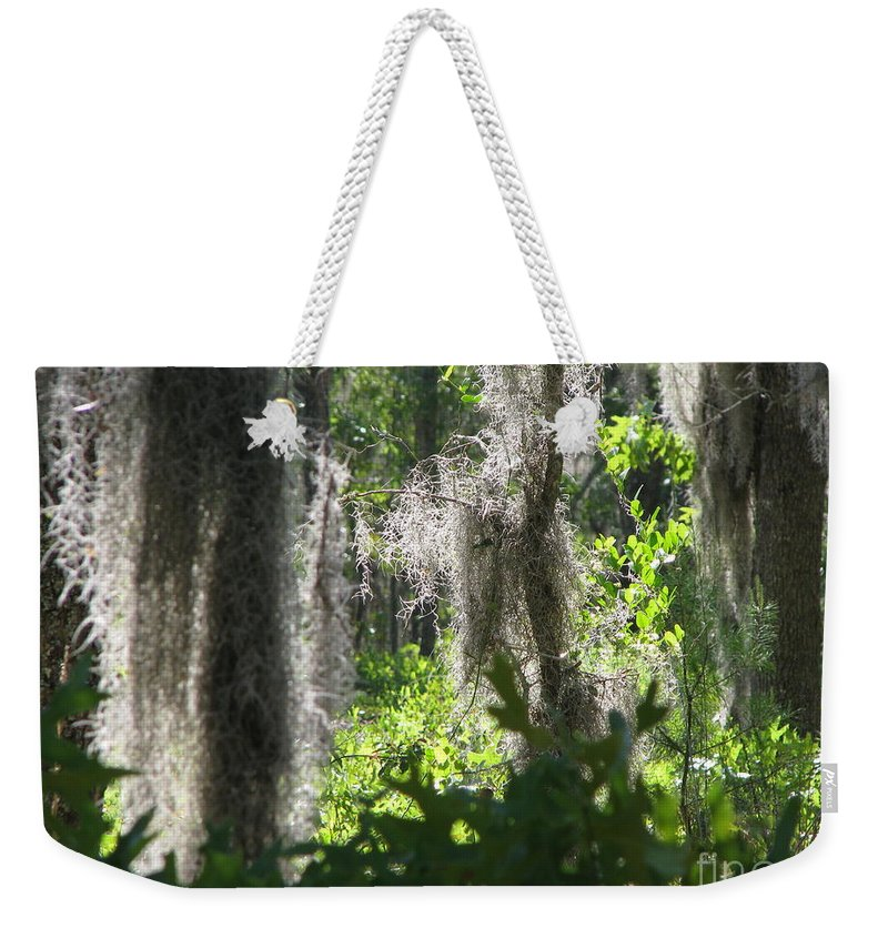 Florida Weekender Tote Bag featuring the photograph Home by Greg Patzer