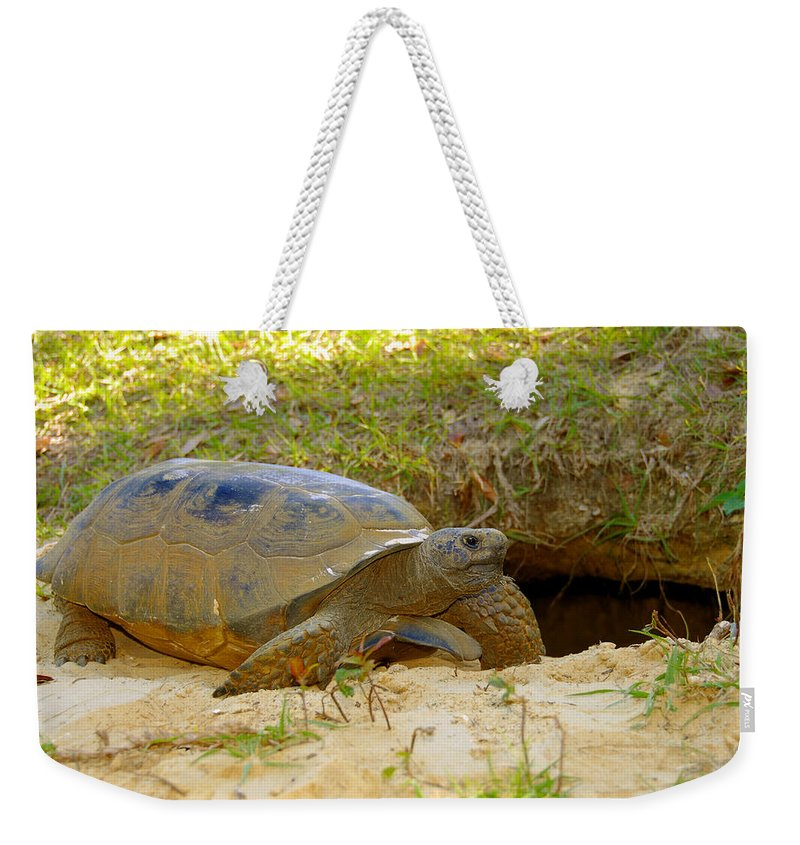 Gopher Tortoise Weekender Tote Bag featuring the photograph Home Sweet Burrow by David Lee Thompson