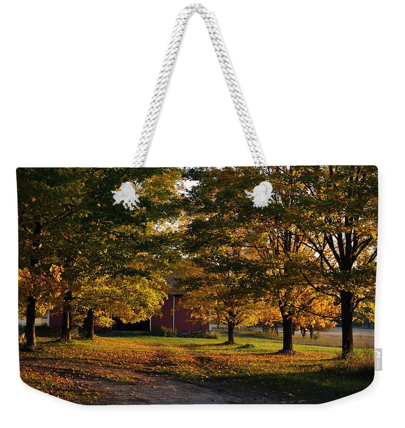 Fall Weekender Tote Bag featuring the photograph Homecoming by Tim Nyberg