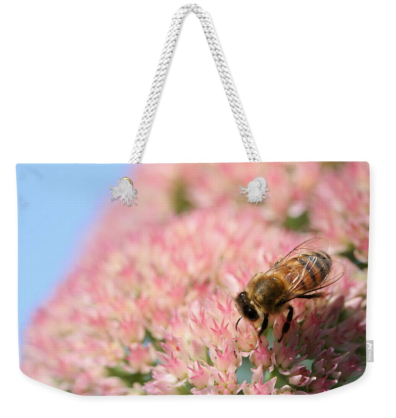 Bee Weekender Tote Bag featuring the photograph Honey Bee 3 by Angela Rath