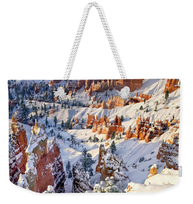 North America Weekender Tote Bag featuring the photograph Hoodoos And Fir Tree In Winter Bryce Canyon Np Utah by Dave Welling