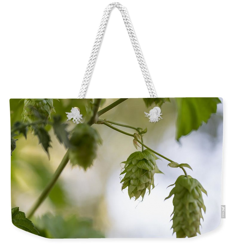 Hops Weekender Tote Bag featuring the photograph Hops For Pickin' by Kevin Buffington