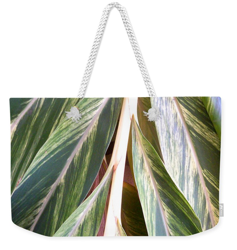 Florida Weekender Tote Bag featuring the photograph Horizon Of Palm by Chris Andruskiewicz