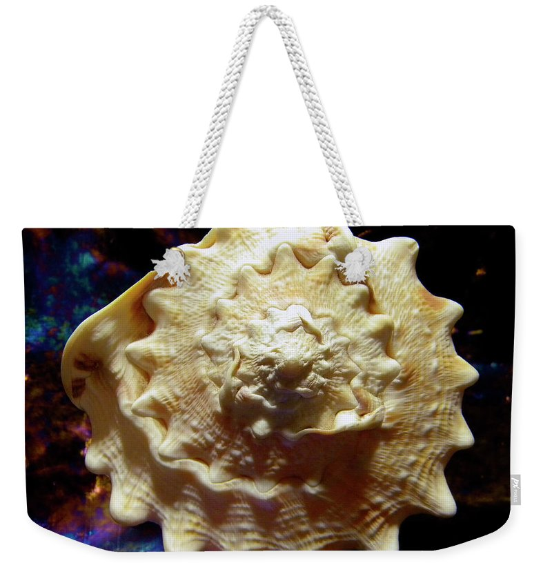 Frank Wilson Weekender Tote Bag featuring the photograph Horned Helmet Shell Top Logarithmic Spiral by Frank Wilson