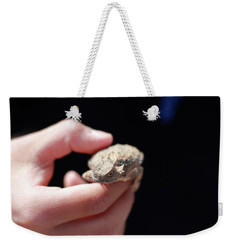 Horned Lizard Weekender Tote Bag featuring the photograph Horny Toad by David Diaz