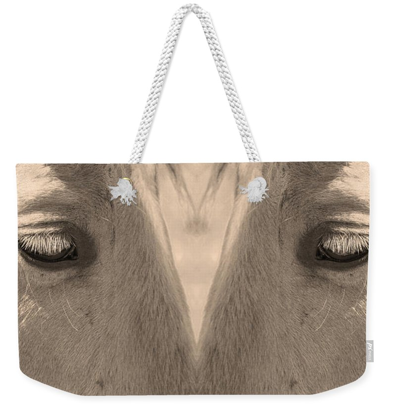Close-ups-horse-horses Weekender Tote Bag featuring the photograph Horse Eyes Love Sepia by James BO Insogna