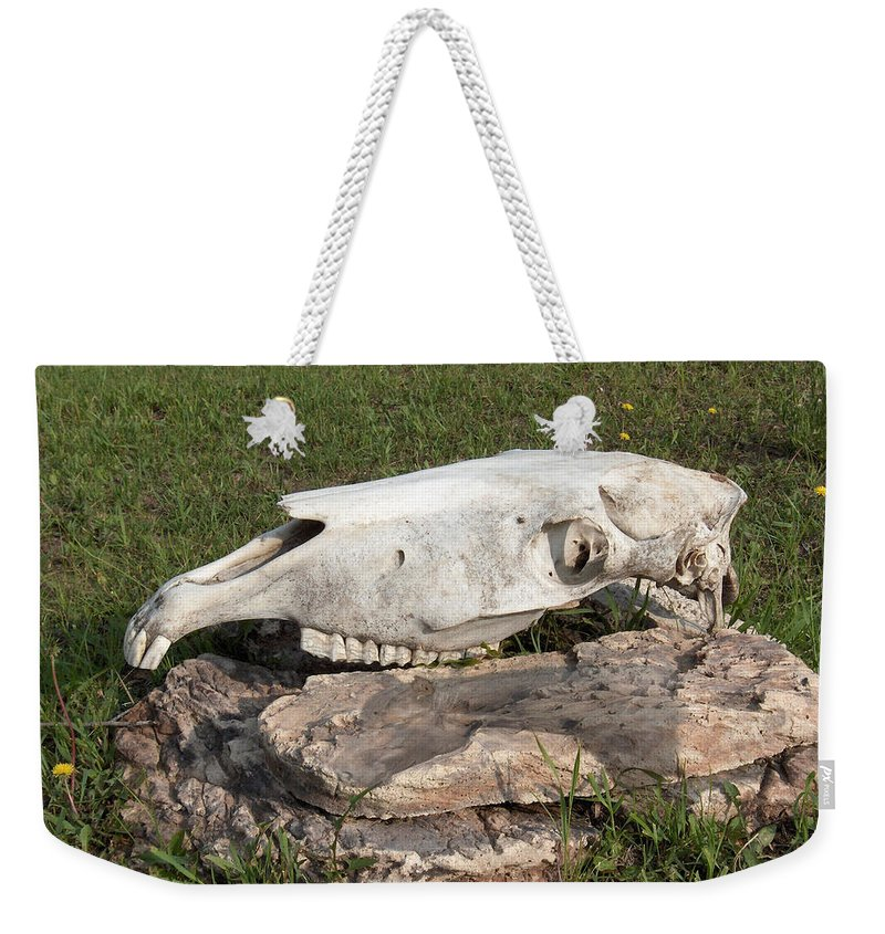 Horse Horses Spiritual Remembering Skull Spirits Ranch Herd Animals Weekender Tote Bag featuring the photograph Horse Spirit 1 by Andrea Lawrence