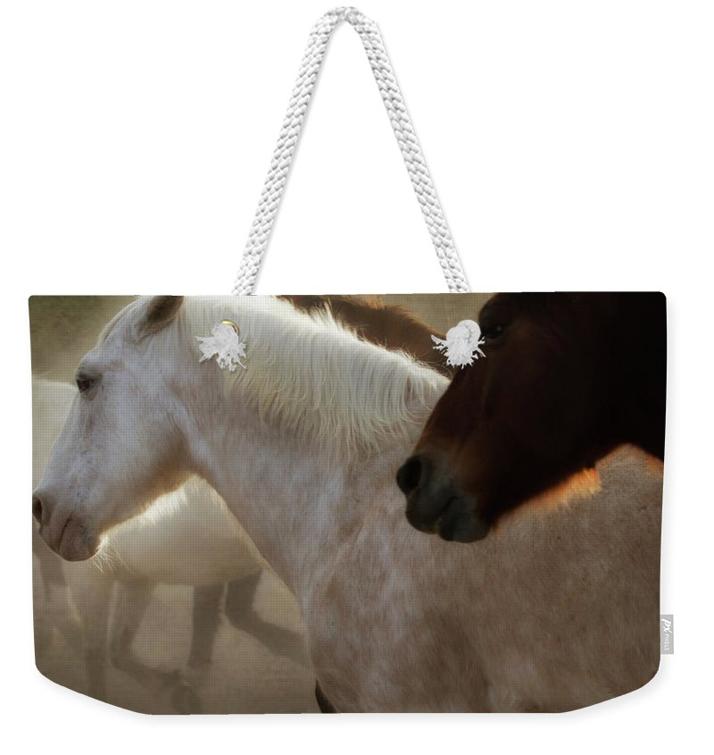 Horses Weekender Tote Bag featuring the photograph Horses-02 by Susan Kordish