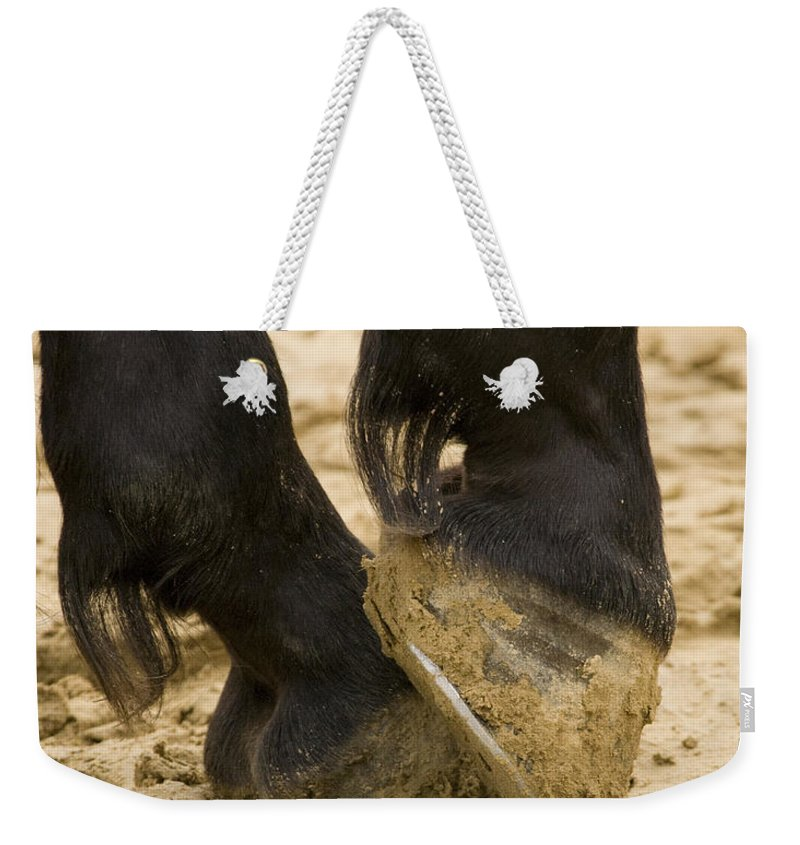 Animal Weekender Tote Bag featuring the photograph Horses Feet by Ian Middleton