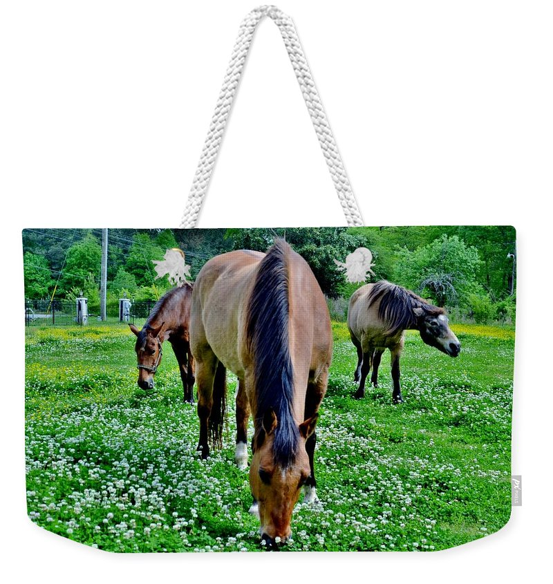 Horses Weekender Tote Bag featuring the photograph Horses In The Meadow by Eileen Brymer