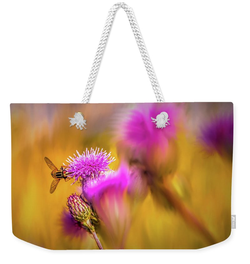 Hoverfly Weekender Tote Bag featuring the digital art Hoverfly Thistle #g7 by Leif Sohlman