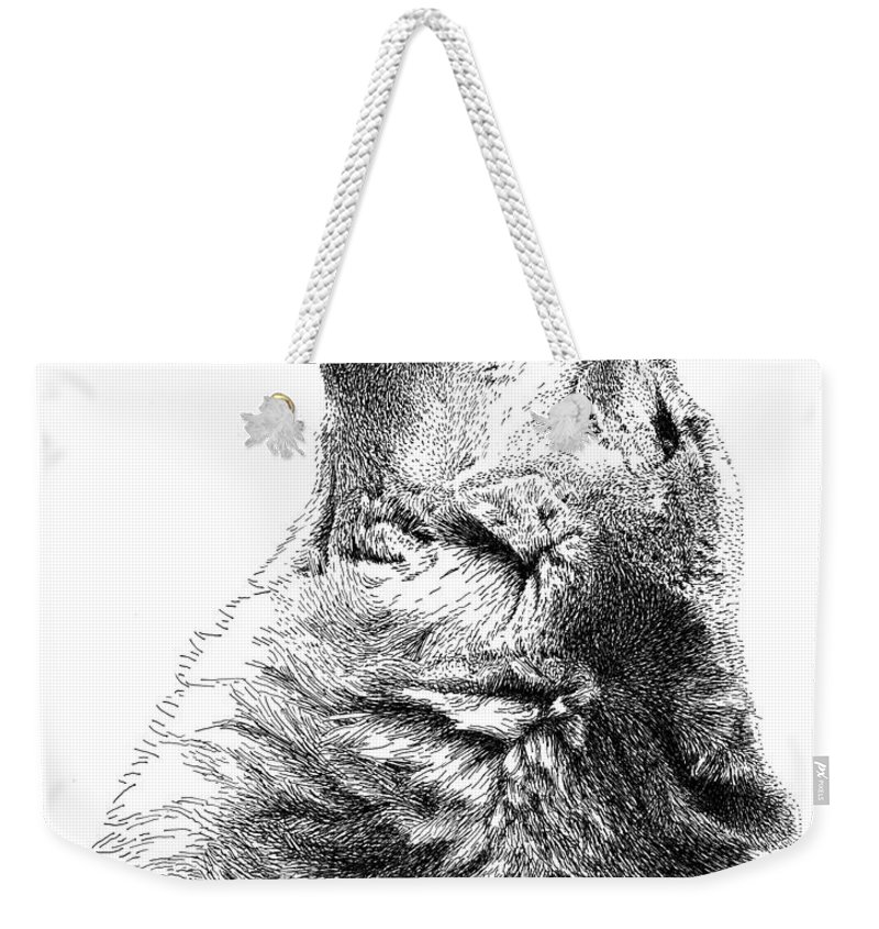 Howling Timber Wolf Weekender Tote Bag featuring the drawing Howling Timber Wolf by Scott Woyak