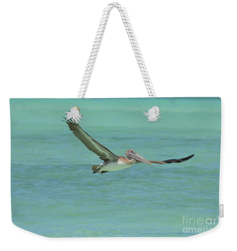 Pelican Weekender Tote Bag featuring the photograph Huge Wing Span On A Pelican In Flight by DejaVu Designs