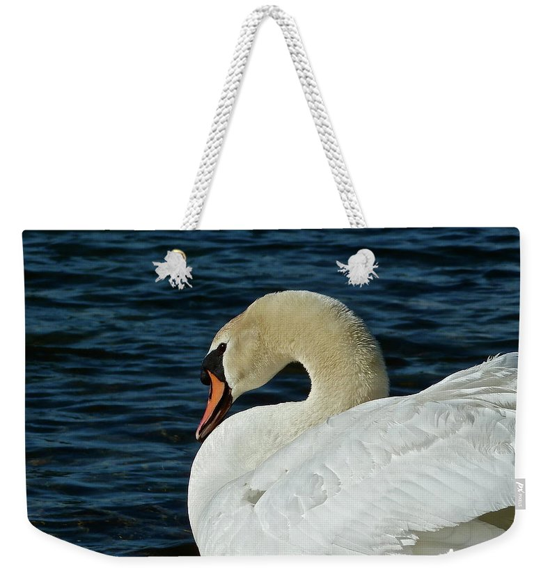 Swan Weekender Tote Bag featuring the photograph Humble Beauty by Diana Hatcher