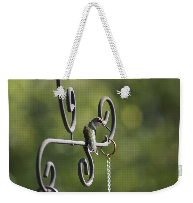 Bird Weekender Tote Bag featuring the photograph Hummer by Heidi Poulin