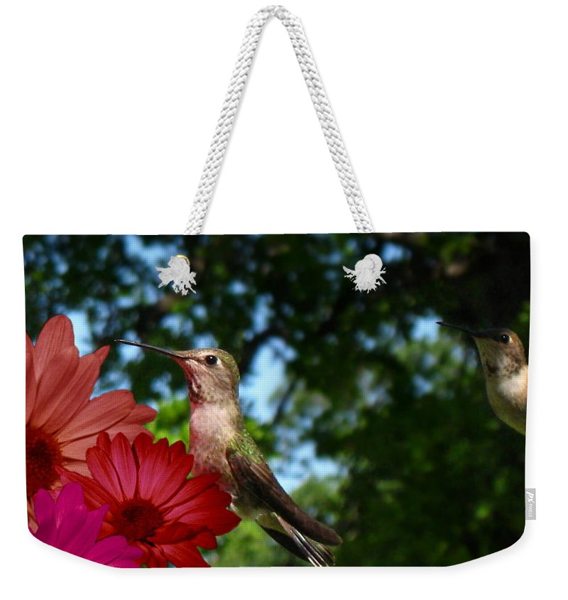 Bird Weekender Tote Bag featuring the photograph Hummers And Colored Daisies by Joyce Dickens