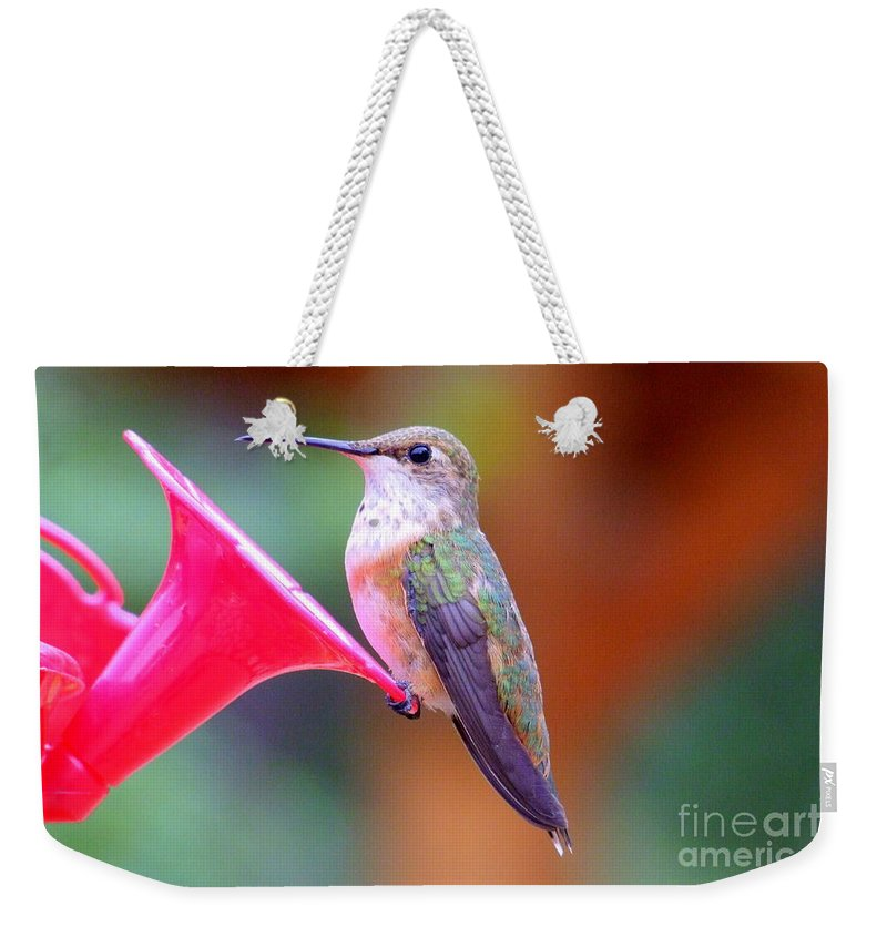 Bird Weekender Tote Bag featuring the photograph Hummingbird - 18 by Mary Deal