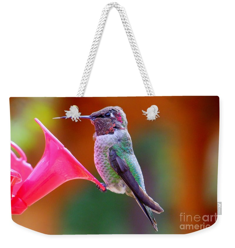 Bird Weekender Tote Bag featuring the photograph Hummingbird - 28 by Mary Deal