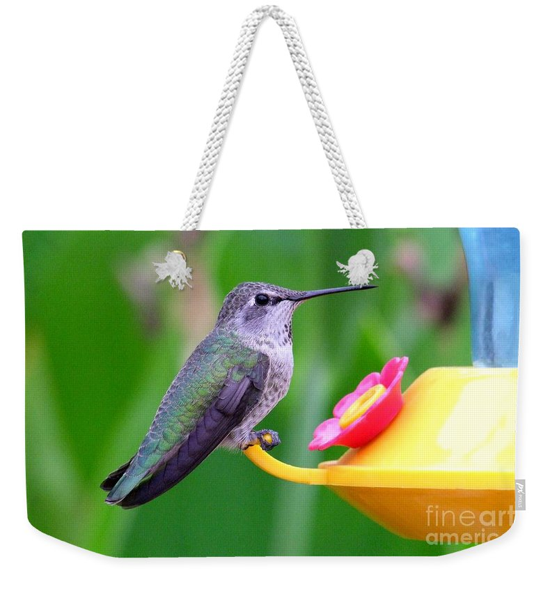 Green Weekender Tote Bag featuring the photograph Hummingbird 32 by Mary Deal